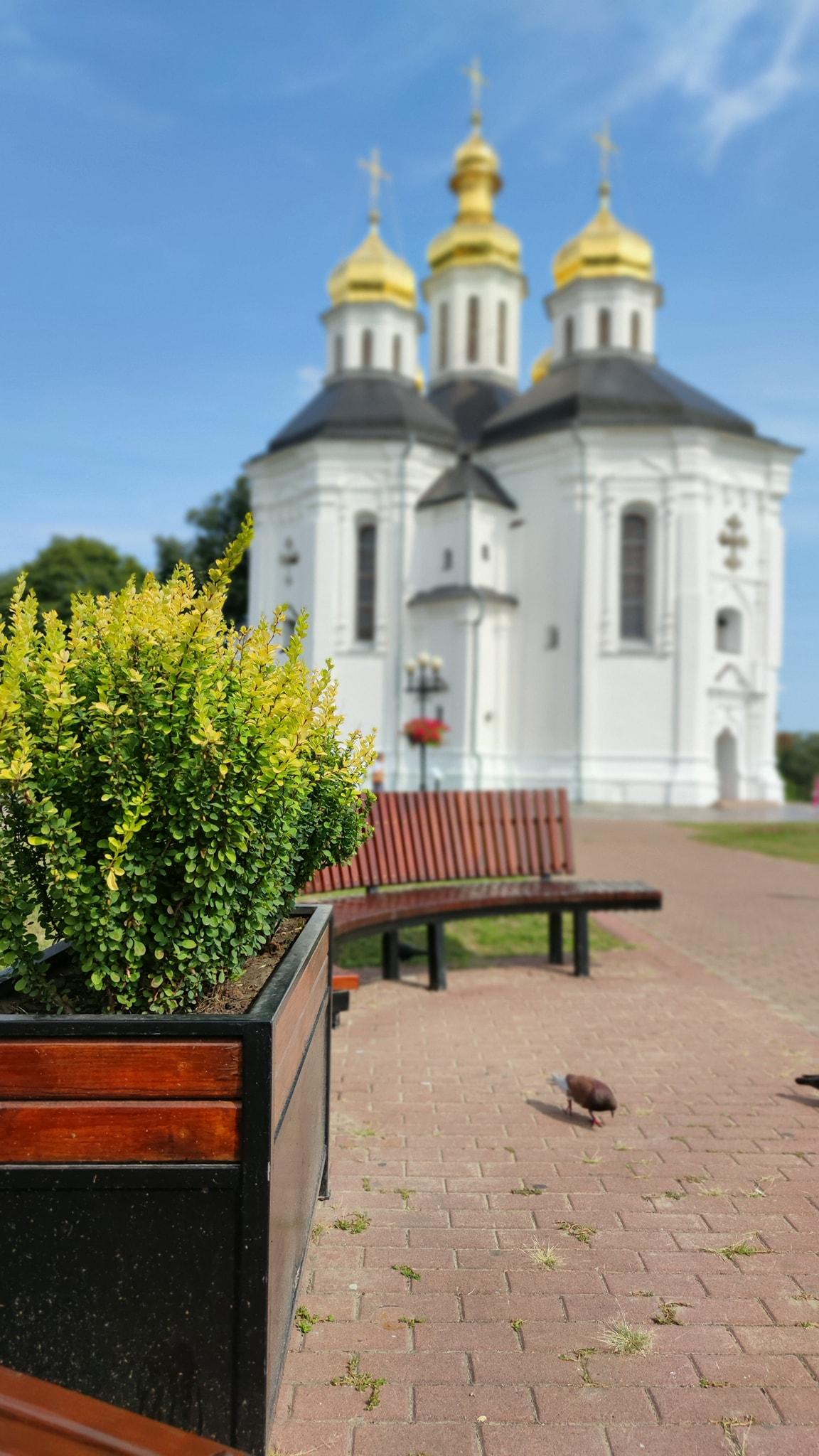 Біля Катерининської церкви висаджують осінні квіти. ФОТО