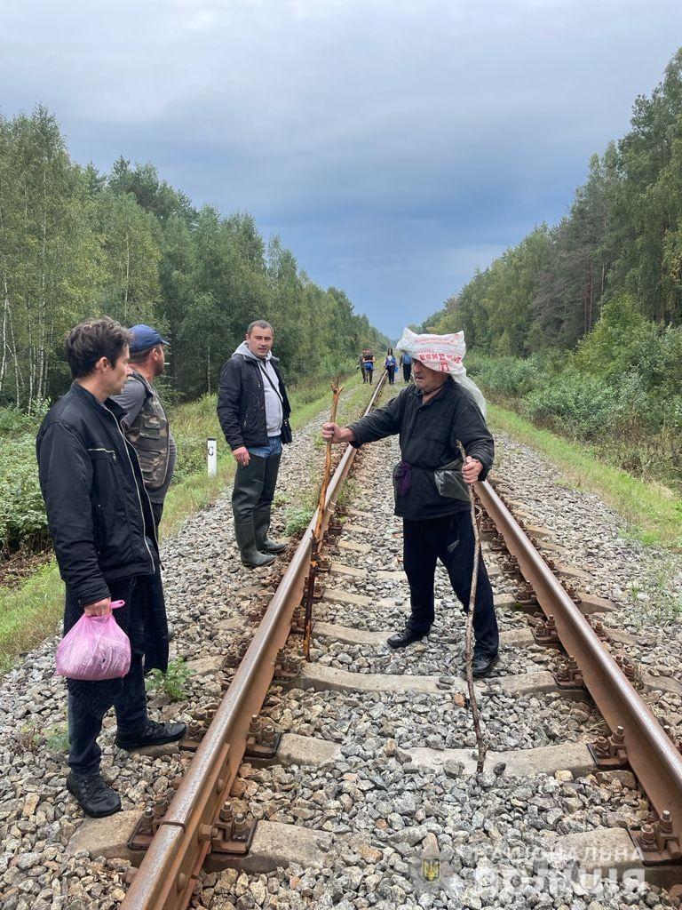 Сидів під деревом: поліція розшукала 73-річного пенсіонера, який добу блукав у лісі на Чернігівщині