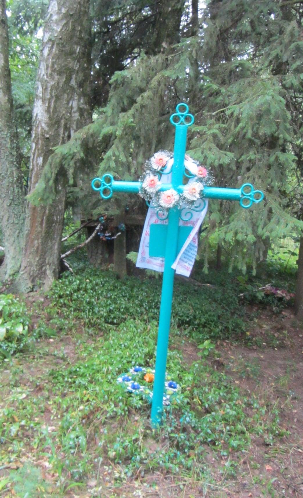 На Чернігівщині жінка понад 50 років доглядає могилу невідомого льотчика