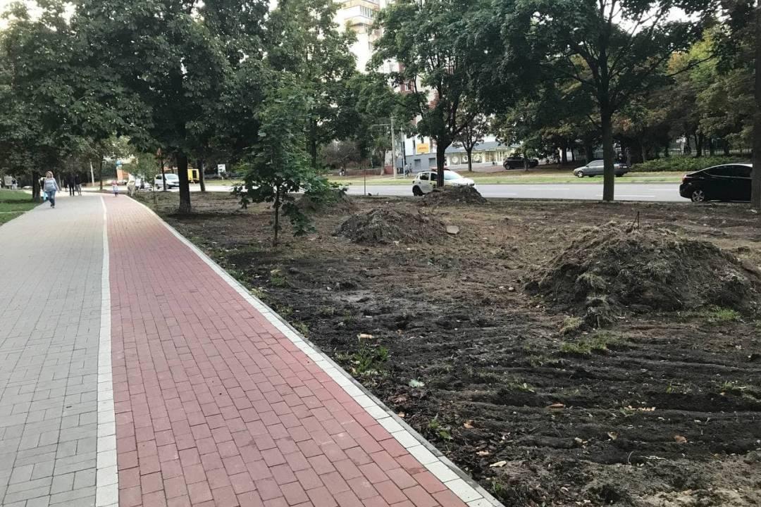 На зелених зонах уздовж вулиці Рокоссовського висадять газон та дерева. ФОТО