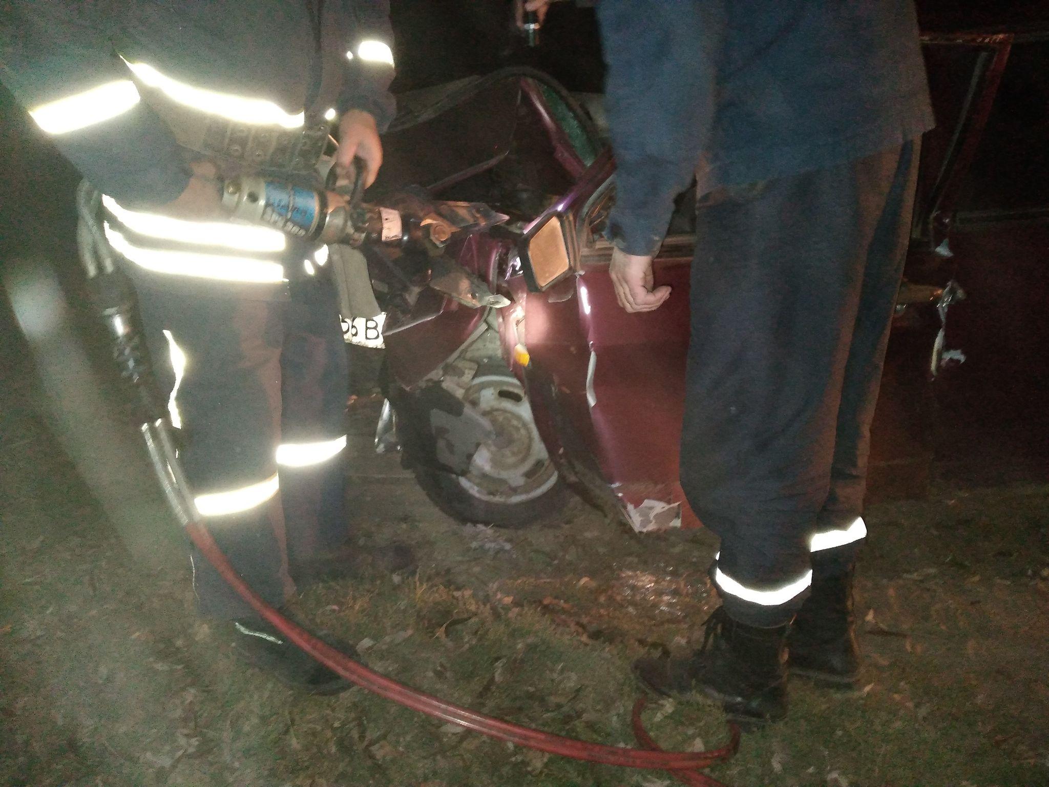 Смертельна ДТП на Чернігівщині: водій на «дев'ятці» врізався у дерево. ФОТО
