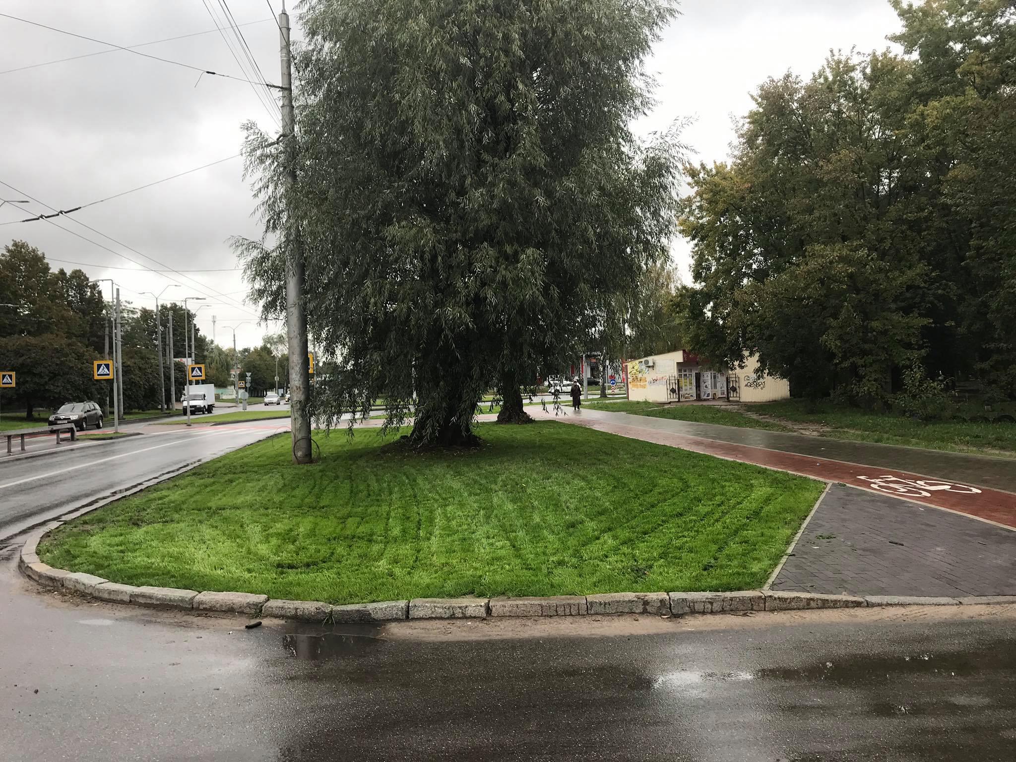 У Чернігові вздовж вулиці Рокоссовського вкладають новенький газон. ФОТО
