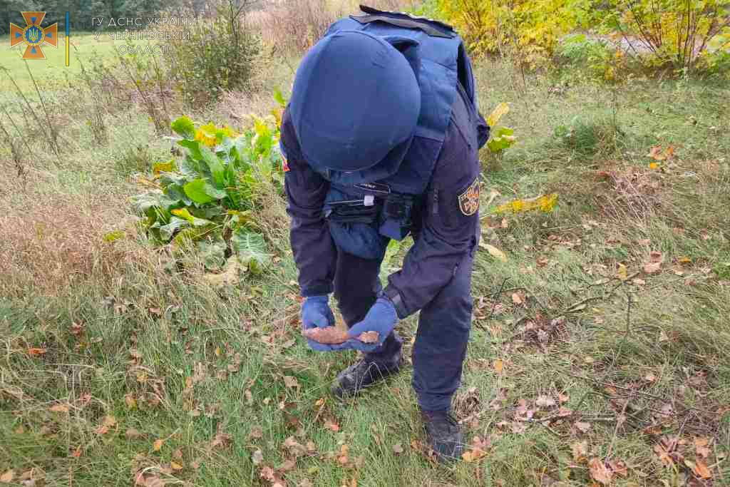 Місцеві знайшли у полі: на Чернігівщині сапери знищили мінометну міну часів Другої світової
